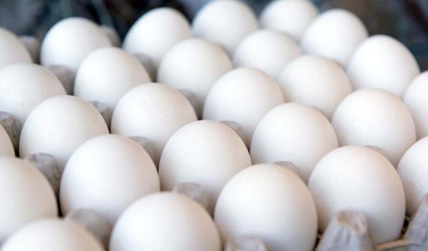 عرضه گسترده تخم مرغ با قیمت شانه ای ۴۲۵۰۰ تومان از امروز