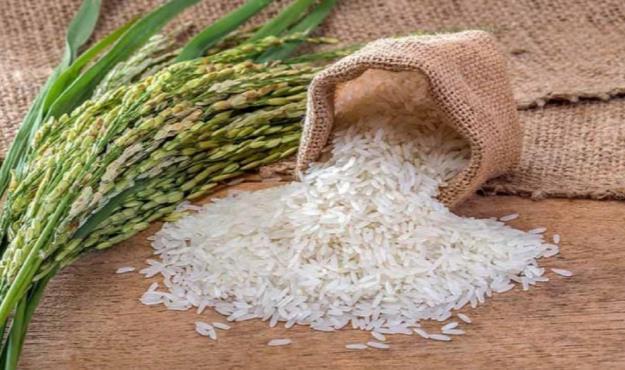 توزیع ۲۵۹ هزار تن برنج با نرخ مصوب در بازار